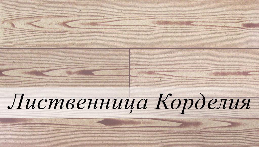лиственница корделия