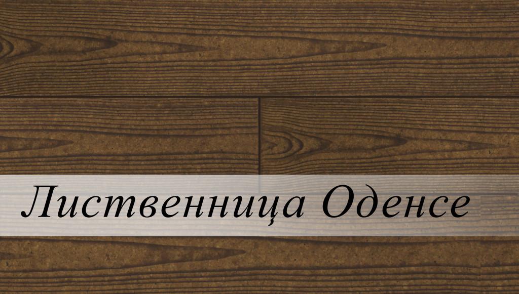 лиственница оденсе