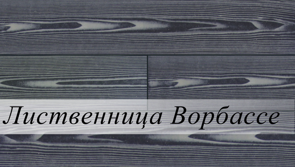 лиственница ворбассе